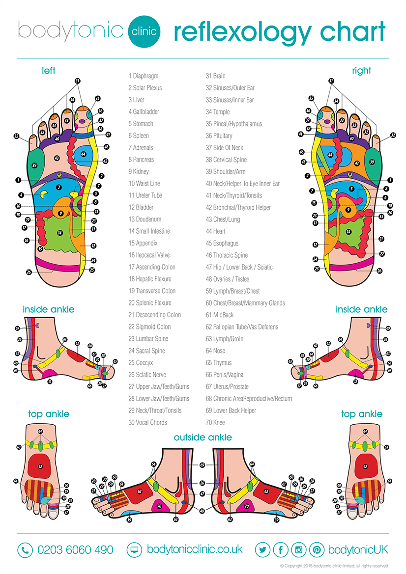 Reflexology Chart - How Does Reflexology Work?